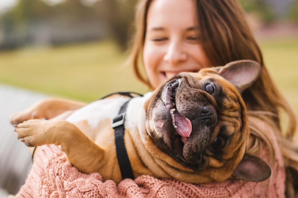 Ponderosa Pet Resort – Sit  Stay  Play  Good Dog
