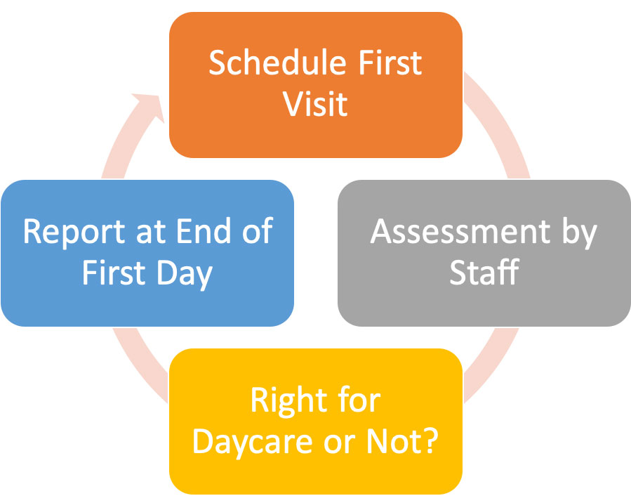How Day Care Assessment Works